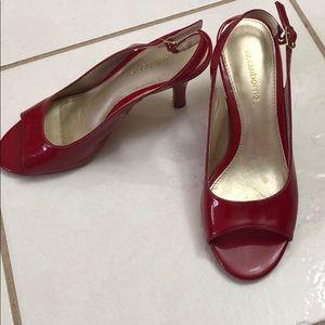 Liz Claiborne Comfy Shoes 👠